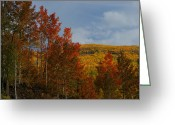 Fall Colors Greeting Cards - Grand Mesa Greeting Card by Ernie Echols