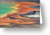 Prismatic Greeting Cards - Grand Prismatic Spring Runoff Greeting Card by Photo by Mark Willocks