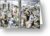 Pressing Greeting Cards - GRAPE HARVEST, c1600 Greeting Card by Granger