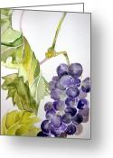 Health Drawings Greeting Cards - Grape Vine Greeting Card by Mindy Newman