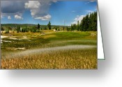 Landscape Framed Prints Greeting Cards - Grass Streaked With Sulphur Greeting Card by Steven Ainsworth