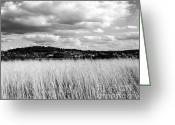 Round Barn Greeting Cards - Grasses overlooking Wale Greeting Card by Jan Faul