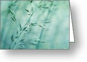 Grasses Greeting Cards - Grassland Greeting Card by Priska Wettstein