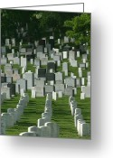 Burials Greeting Cards - Gravestones Greeting Card by Skip Brown