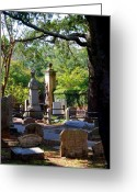 Historic Greeting Cards - Graveyard in Charleston Greeting Card by Susanne Van Hulst
