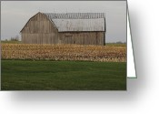 Amish Farms Greeting Cards - Gray Skies Greeting Card by Lydia Warner Miller