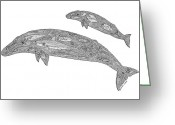 Tribal Drawings Greeting Cards - Gray Whale and Calf Greeting Card by Carol Lynne