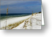Grayton Beach Greeting Cards - Grayton Beach  Florida Greeting Card by Judy Wanamaker