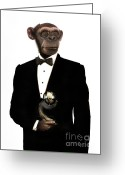 Tuxedo Mixed Media Greeting Cards - Great Ape Greeting Card by Carlos De Las Heras