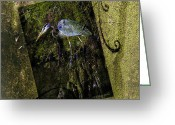 Great Blue Heron Digital Art Greeting Cards - Great Blue Heron - Abstract Greeting Card by J Larry Walker