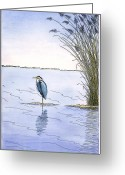 Bay Mixed Media Greeting Cards - Great Blue Heron Greeting Card by Charles Harden