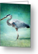 Sanibel Island Greeting Cards - Great Blue Heron Greeting Card by Ellen Lacey
