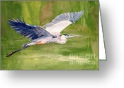Flying Greeting Cards - Great Blue Heron Greeting Card by Pauline Ross