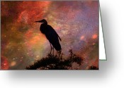 Larry Walker Greeting Cards - Great Blue Heron Viewing The Cosmos Greeting Card by J Larry Walker
