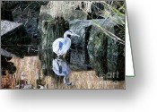 Great Blue Heron Digital Art Greeting Cards - Great Blue Reflection - Digital Art Greeting Card by Al Powell Photography USA