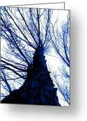 Music Score Digital Art Greeting Cards - Great Blue Spirit Greeting Card by Pace Michael
