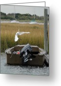 Great Egret Greeting Cards Greeting Cards - Great Egret 133 Greeting Card by Joyce StJames