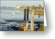 Jensen Beach Greeting Cards - Great Egret Takes Flight Greeting Card by Lynda Dawson-Youngclaus
