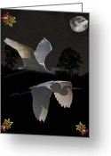 Lesvos Greeting Cards - Great Egrets  Greeting Card by Eric Kempson