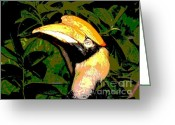 Hornbill Greeting Cards - Great Hornbill Greeting Card by Spencer McKain