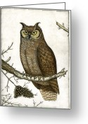 Barn Mixed Media Greeting Cards - Great Horned Owl Greeting Card by Charles Harden
