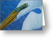 Jon Ferrentino Greeting Cards - Great White Egret Greeting Card by Jon Ferrentino