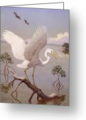 Morph Greeting Cards - Great White Heron, White Morph Of Great Greeting Card by Walter A. Weber