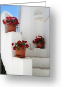 Greek Photo Greeting Cards - Greek steps  Greeting Card by Jane Rix