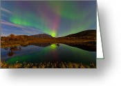 Canon 5d Mk2 Greeting Cards - Green and purple Greeting Card by Frank Olsen