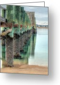 Bay Islands Greeting Cards - Green Day Greeting Card by JC Findley