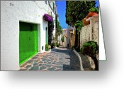 Old Street Greeting Cards - Green Door Passage  Greeting Card by Harry Spitz