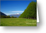 Snow Capped Greeting Cards - Green field with snow-capped mountains Greeting Card by Mats Silvan