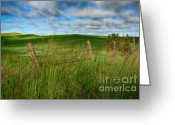 Spokane Greeting Cards - Green Green grass of Home Greeting Card by Reflective Moments  Photography and Digital Art Images