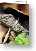 Lizard Greeting Cards - Green Iguana Greeting Card by Craig Incardone