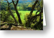 Texas Hill Country Greeting Cards - Green Pastures Greeting Card by Robert Anschutz