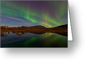 Canon 5d Mk2 Greeting Cards - Green stripes Greeting Card by Frank Olsen