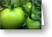 Green Tomato Greeting Cards - Green Tomatoes No.2 Greeting Card by Kamil Swiatek