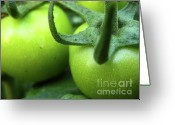 Green Tomato Greeting Cards - Green Tomatoes No.3 Greeting Card by Kamil Swiatek