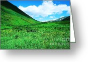 Ronnie Glover Greeting Cards - Green Valley Greeting Card by Ronnie Glover