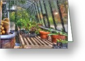 Planter Greeting Cards - Greenhouse - In a Greenhouse Window  Greeting Card by Mike Savad