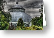 Interesting Greeting Cards - Greenhouse - The Observatory Greeting Card by Mike Savad