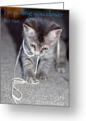 Kitten Greeting Card Greeting Cards - Greeting card with Kitten Greeting Card by Micah May