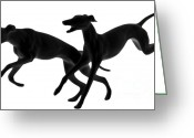 Interesting Art Greeting Cards - Greyhounds travelling at 45 MPH Greeting Card by Christine Till
