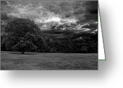 Victoria Wise Greeting Cards - Greyscale Storm Greeting Card by Victoria Wise