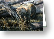 Kodiak Painting Greeting Cards - Grizzly Pond Greeting Card by Scott Thompson