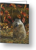 Groundhog Greeting Cards - Groundhog Bulking up for Winter Greeting Card by Susan Donley