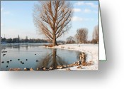 Large Group Of Animals Greeting Cards - Group Of Geese Huddled Together Greeting Card by Richard Fairless