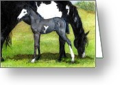 Bay Horse Greeting Card Greeting Cards - Grulla Paint Mare And Foal Portrait Greeting Card by Olde Time  Mercantile