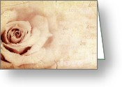 Present Card Greeting Cards - Grungy rose background Greeting Card by Anna Omelchenko
