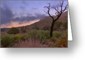"\""guadalupe National Park\\\"" Greeting Cards - Guadalupe Mountains At Dawn Greeting Card by Stephen  Vecchiotti"